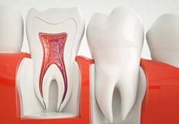 Animation of healthy inner tooth